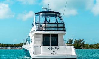 Sea Ray Sedan Bridge Luxury Charter in Miami