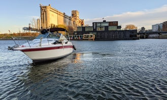 Classic 25ft Sea Ray Motor Yacht Charter and fun in Montréal