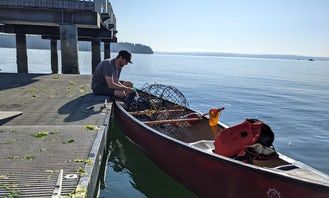 Old Town Discovery Canoe for Rent in Gig Harbor