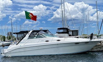 39' Sea Ray Sundancer in Toronto Available for Private Charters