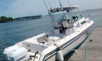 Fishing and Pleasure Cruises in Revere - 28ft Grady White
