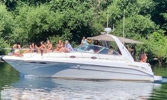 SeaRay Sundancer 36ft Yacht rentals in Toronto