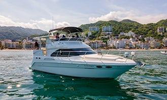 Sea Ray 40ft Yacht Charter in Puerto Vallarta