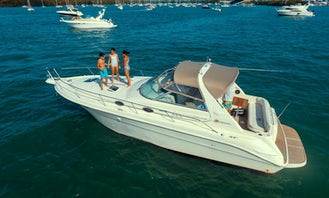 SEA RAY SUNDACER 330 for Daily Charter in Miami