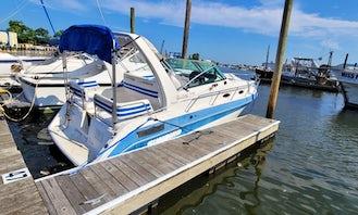 Sunbird Barletta 279 Cabin Cruiser in Freeport