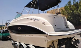 Bayliner for Rent in Matrouh Governorate