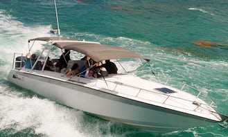 34' Center Console Trip to Three Island / Paradise islands - Swim with the turtles - Awesome Snorkeling - Great Crew