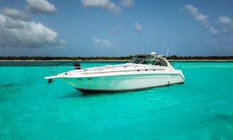 Sea Ray 53ft Luxury Yacht Adventure in Playa del Carmen