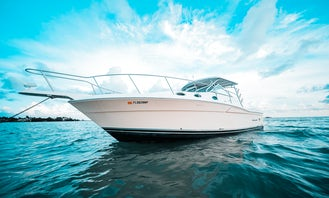 Wellcraft 39ft Cruiser for Sand Bar and Intercoastal Trips up to 12 people in Miami