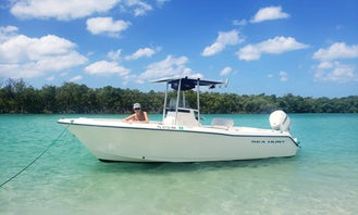 Sea Hunt 22ft Center Console for Rental in Englewood, Florida