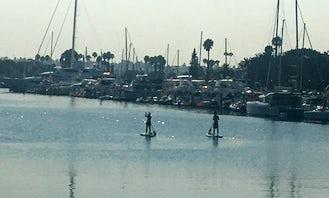 Marina Paddle Board Rentals