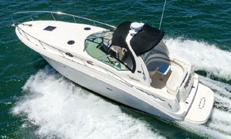 Sea Ray 320 Sundancer motor yacht available in Mission Bay!