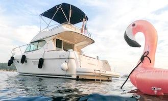 ❤️ ⭐️⭐️⭐️ Prestige 32 Flybridge Yacht Charter + PADDLE ⛱☀️