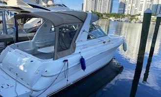 Sea Ray Sundancer 33ft Yacht Charter in Miami