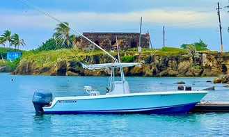 Water Tour of Old San Juan Bay in Style & Full of Caribbean Flare!