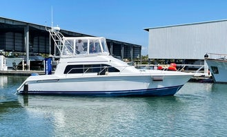 """Manana"" Mainship Sedan Bridge Motor Yacht for Adventure in St. Petersburg"