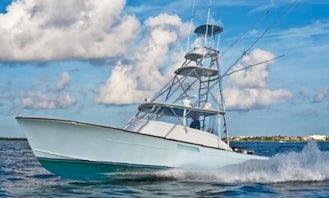 Game Fisher 36 Quepos Marina Pez Vela Costa Rica