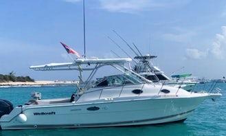 29' Wellcraft Cuddy Cabin Private Charter in Fajardo