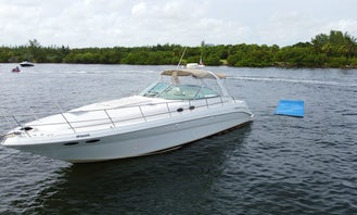 45' Yacht Rental & Party, with Captain, enjoy Miami Beach in a unique way