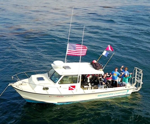 Private Diving Charter in San Diego